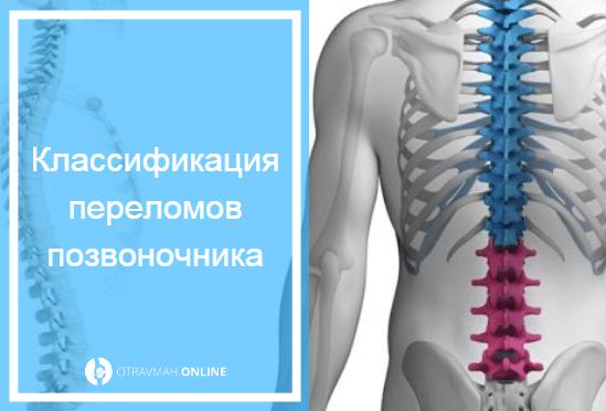 симптомы перелома позвоночника